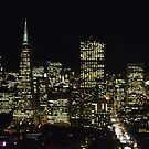 San Fransisco night view of skyline by kellimays