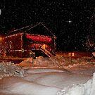 Christmas Lights by AnnDixon