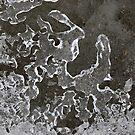 ICE by teresalynwillis
