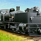 VicRail 2-6-0 + 0-6-2  G-Class Garratt  (G41) by LocomotiveArt