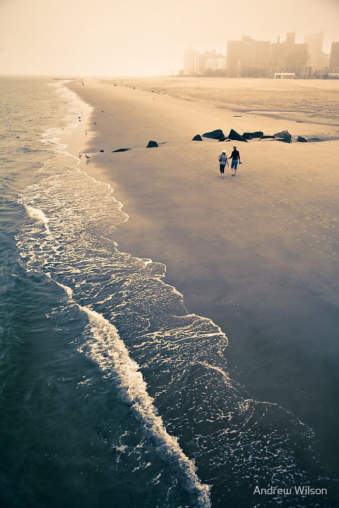 Coney Island Serenity by Andrew Wilson