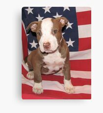 I'm All American Canvas Print