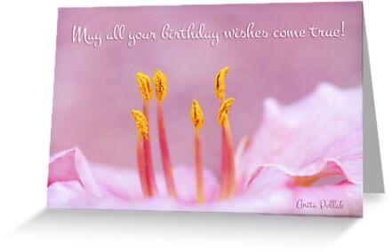 Fairy Dancers Birthday Card by Anita Pollak