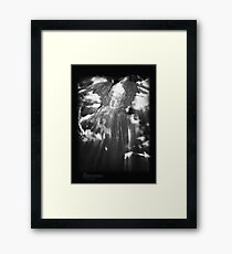 ©DA Angel IIAE Monochromatic Framed Print