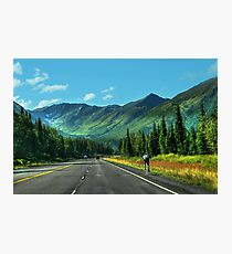 Cycling in Denali Photographic Print