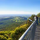 Illawarra Fly View by Dilshara Hill