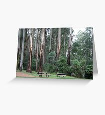 Sherbrook Forest. Greeting Card