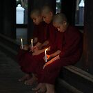 Novices by candlelight by Mark Prior
