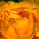 Golden von Celeste Mookherjee