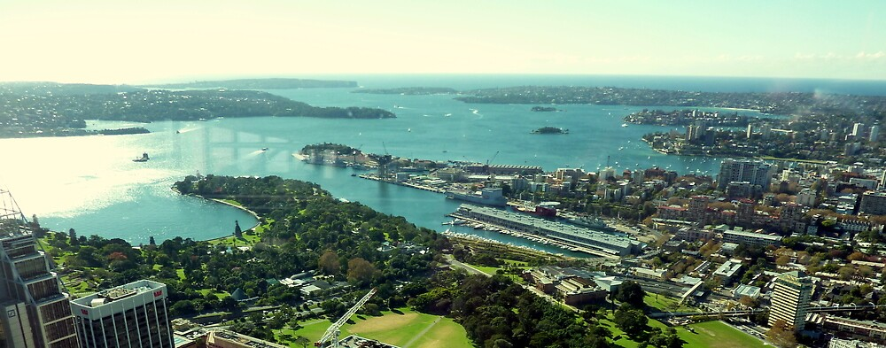 Sydney Harbour from Centrepoint Tower by Fred Marsh