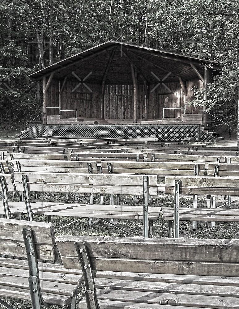 Park Pavilion Stage by Phil Perkins