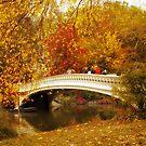 Bow Bridge Charm by Jessica Jenney