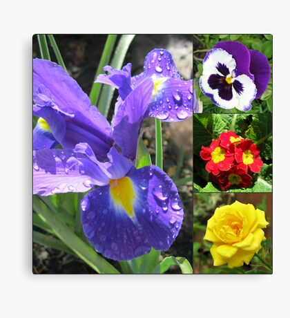 Iris Collage Leinwanddruck