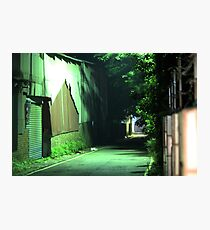 Green Isolation	 Photographic Print