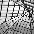 Glass Ceiling by Allison  Flores