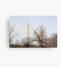 Washington Monument Behind Trees Metal Print