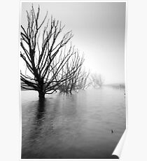 Fog on the Water Poster