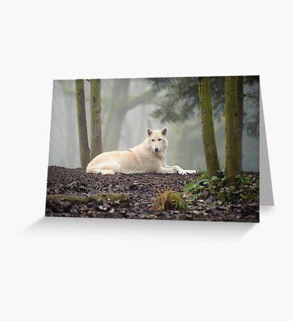 Lone Wolf Greeting Card