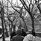 Fall Walks Arm in Arm  by DearMsWildOne