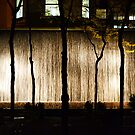 Slender Silhouettes  by DearMsWildOne