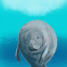 Manatee - Sketched on an iPad - Phone Case by Ray Cassel