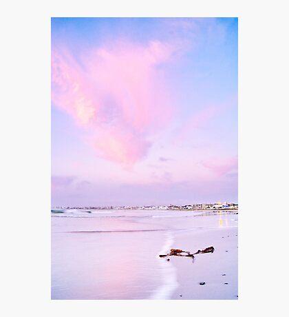 Sunset Kelp Photographic Print