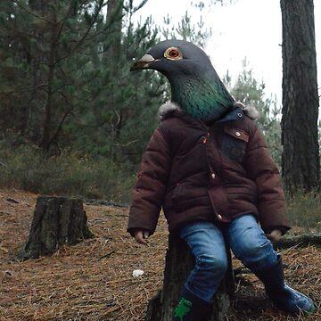 The pigeon boy by senshiP