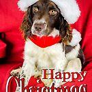 Happy Christmas by JEZ22