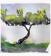 A Tree Grows In Waynesboro, Virginia Poster