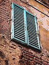 Shuttered window, Siena, Italy by David Carton