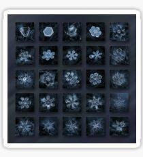 Snowflake collage - Season 2013 dark crystals Sticker