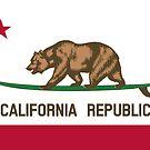 Surfing California Bear by artlung