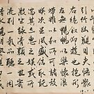 Chinese calligraphy by davvi