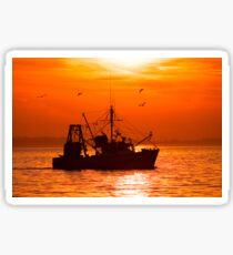 Perfect Fishing Weather Sticker