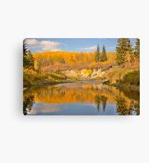 Autumn in Whitemud Ravine Canvas Print