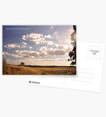 Rural sunset Postcards