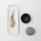 Still Life ~ Gum leaf & pebble with Mud ceramics by JoHammond