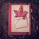 Still Life ~ Autumnal by JoHammond