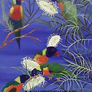 LORIKEETS LOVE by jansimpressions