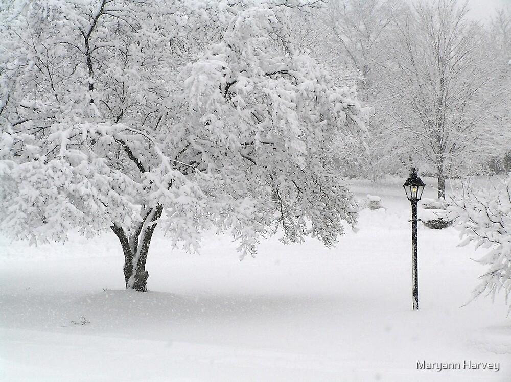 Lamplit Snowfall by Maryann Harvey