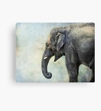 Elephant for Ali Canvas Print