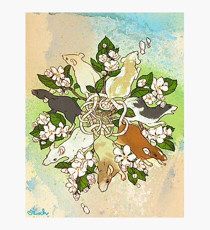Bright Spring Rat King Photographic Print