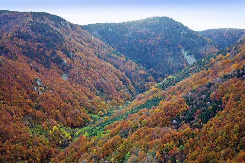 Autumn in the Ardeche - France by Arie Koene
