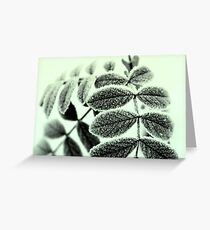 wintry #1 Greeting Card