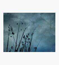 Seaside Storm Photographic Print