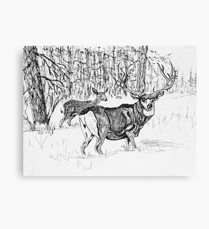 Winter Deer, new Hi-Res Canvas Print