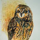 'Short Eared Owl' by fi-ceramics