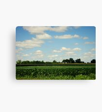 Midwest Field and Sky Canvas Print
