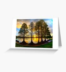 Sunset Cypresses Greeting Card
