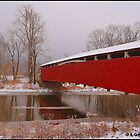 The Red Bridge by Mike Griffiths